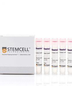 Kit tách MSC RosetteSep™ Human Mesenchymal Stem Cell Enrichment Cocktail
